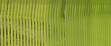 parallelism: texture greens