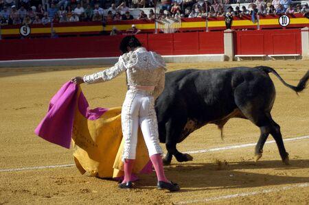 coping: The bullfighter Miguel Abellan in the bullfight held in Granada on 3 June 2007, at Feria de Corpus
