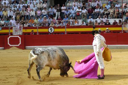 bull rings: The bullfighter Miguel Abellan in the bullfight held in Granada on 3 June 2007, at Feria de Corpus