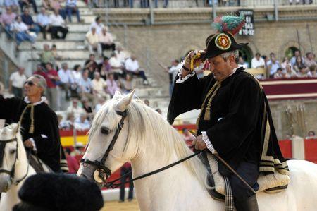 Andalusian Horse Alguacilillo the bullfight held in Granada on 3 June 2007, at Feria de Corpus Stock Photo - 6890880