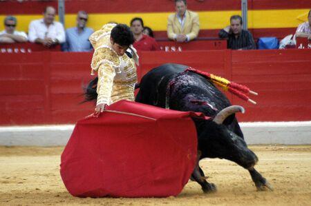 bull rings: The bullfighter Cayetano Rivera in the bullfight held in Granada on 7 June 2007, at Feria de Corpus