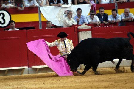 coping: The bullfighter Cayetano Rivera in the bullfight held in Granada on 7 June 2007, at Feria de Corpus