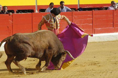 bull rings: The bullfighter Juli�n L�pez, El Juli in the bullfight held in Granada on 6 June 2007, at Feria de Corpus