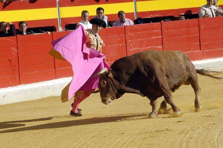 coping: The bullfighter Juli�n L�pez, El Juli in the bullfight held in Granada on 6 June 2007, at Feria de Corpus