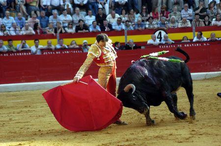 matador: De stieren vechter Manuel Jezus el Cid in het stieren gevecht gehouden in Granada op 7 juni 2007, Feria de corpus