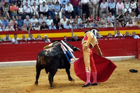 cid: The bullfighter Manuel Jesus el Cid in the bullfight held in Granada on 7 June 2007, at Feria de Corpus