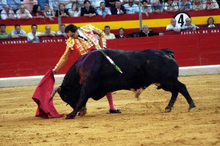 matadors: The bullfighter Manuel Jesus el Cid in the bullfight held in Granada on 7 June 2007, at Feria de Corpus