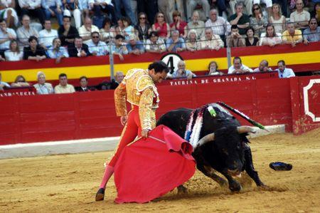 coping: The bullfighter Manuel Jesus el Cid in the bullfight held in Granada on 7 June 2007, at Feria de Corpus