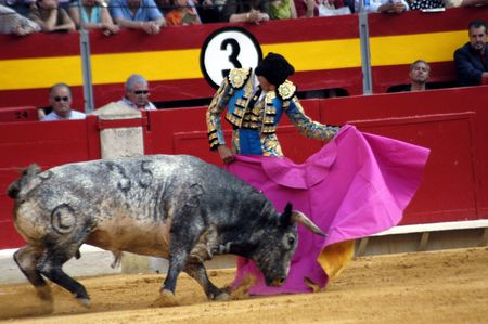 matadors: The bullfighter Salvador Cortes in the bullfight held in Granada on 7 June 2007, at Feria de Corpus