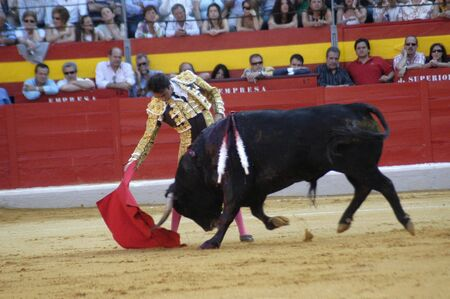 matadors: The bullfighter Enrique Ponce in the bullfight held in Granada on 7 June 2007, at Feria de Corpus