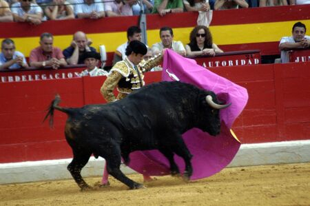 matadors: The bullfighter Alejandro Talavante in the bullfight held in Granada on 7 June 2007, at Feria de Corpus