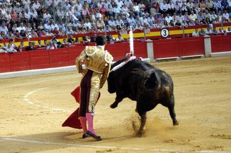 matadors: The bullfighter Alejandro Talavante in the bullfight held in Granada on 7 June 2007, at Feria de Corpus