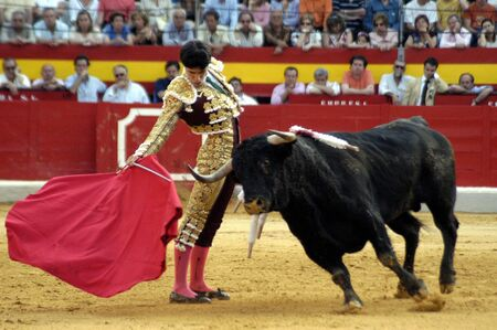 The bullfighter Alejandro Talavante in the bullfight held in Granada on 7 June 2007, at Feria de Corpus