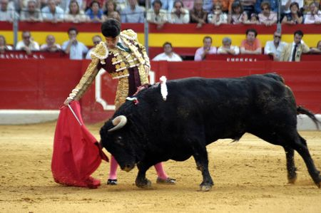 fight arena: The bullfighter Alejandro Talavante in the bullfight held in Granada on 7 June 2007, at Feria de Corpus
