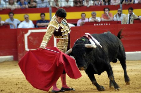 bull rings: The bullfighter Alejandro Talavante in the bullfight held in Granada on 7 June 2007, at Feria de Corpus