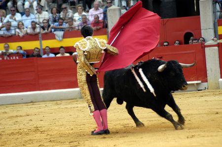coping: The bullfighter Alejandro Talavante in the bullfight held in Granada on 7 June 2007, at Feria de Corpus
