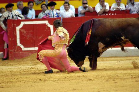 coping: The bullfighter Manuel Diaz,  Editorial