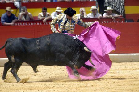 bullfight: El torero Jos� Mar�a Manzanares, en la corrida celebrada en Granada el 6 de junio de 2007, en la Feria de corpus  Editorial