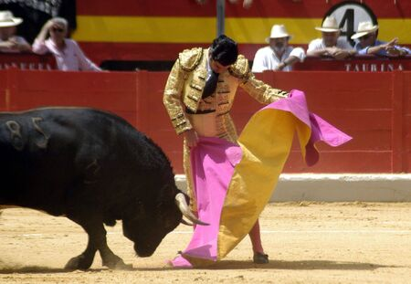 bull rings: The bullfighter Morante de la Puebla in the bullfight held in Granada on 7 June 2007, at Feria de Corpus