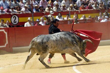 cano: The bullfighter José Ortega Cano in the bullfight held in Granada on 7 June 2007, at Feria de Corpus
