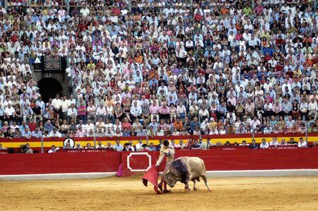 The bullfighter Sebastian Castella in the bullfight held in Granada on 7 June 2007, at Feria de Corpus Stock Photo - 6895929