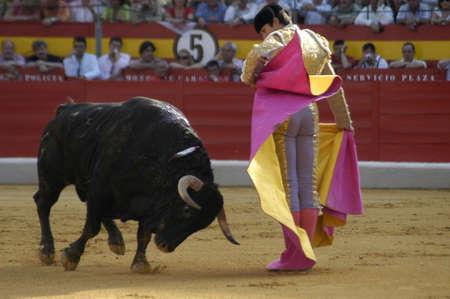 coping: The bullfighter Sebastian Castella in the bullfight held in Granada on 7 June 2007, at Feria de Corpus