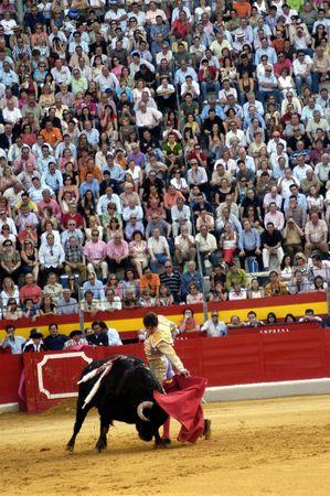 corrida: Le torero Sebastian Castella dans la corrida tenue � Grenade le 7 juin 2007, � la Feria de Corpus
