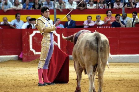 matadors: The bullfighter Sebastian Castella in the bullfight held in Granada on 7 June 2007, at Feria de Corpus