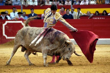 corrida de toros: El torero Sebastian Castella, en la corrida celebrada en Granada el 7 de junio de 2007, en la Feria de corpus