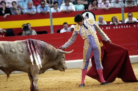 bullfight: El torero Sebasti�n Castella, en la corrida celebrada en Granada el 7 de junio de 2007, en la Feria de corpus