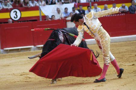 The bullfighter David Fandila, El Fandi, in the bullfight held in Granada on 7 June 2007, at Feria de Corpus Stock Photo - 6895860