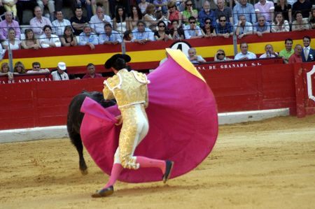 el fandi: The bullfighter David Fandila, El Fandi, in the bullfight held in Granada on 7 June 2007, at Feria de Corpus Editorial
