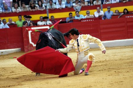 The bullfighter David Fandila, El Fandi, in the bullfight held in Granada on 7 June 2007, at Feria de Corpus Stock Photo - 6895910