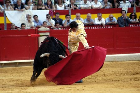 bull rings: The bullfighter David Fandila, El Fandi, in the bullfight held in Granada on 7 June 2007, at Feria de Corpus Editorial