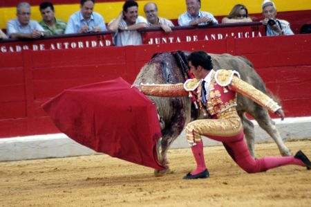 The bullfighter David Fandila, El Fandi, in the bullfight held in Granada on 7 June 2007, at Feria de Corpus Stock Photo - 6896022