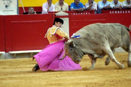 el fandi: The bullfighter David Fandila, El Fandi, in the bullfight held in Granada on 7 June 2007, at Feria de Corpus Editorial