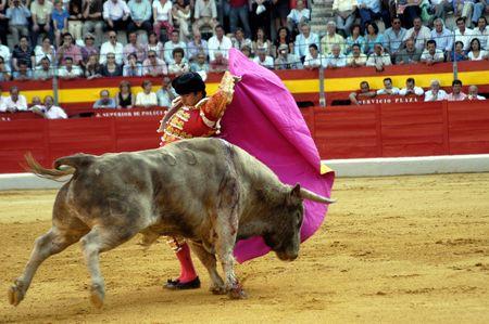 The bullfighter David Fandila, El Fandi, in the bullfight held in Granada on 7 June 2007, at Feria de Corpus Stock Photo - 6896051