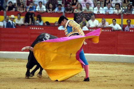 El torero David Fandila, El Fandi, en la corrida celebrada en Granada el 7 de junio de 2007, en la Feria de corpus Editorial