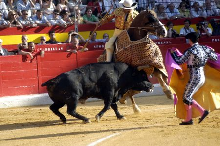 matadors: Picador and his horse in the bullring in Granada (Spain) in the bull Corpus Fair June 2007
