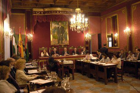council: Granada Full Council 26062007 Editorial