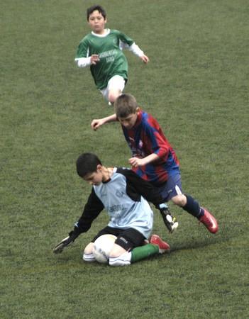 proclaimed: 20090328- Granada-Spain-Football game between the Vandalia Alevín A against Atletico Darro, where the Vandalia was proclaimed league champion just four days. Editorial