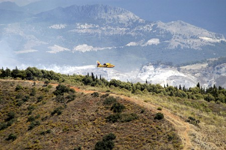 forest fire: Tareas de extinci�n de un incendio forestal