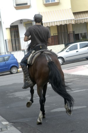 20091004 granada-spain-horses in the popular festivals of granada albaicín
