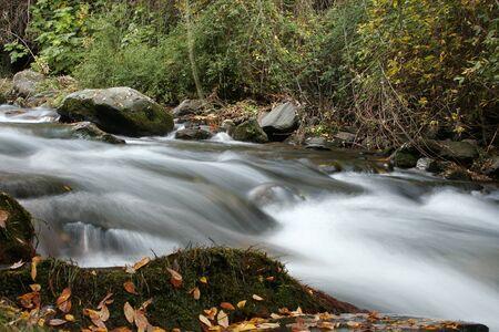 Sierra Nevada forest, river, river Genil Stock Photo