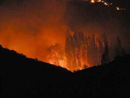 forest fire: Fuego de noche en la Sierra de Baza Foto de archivo