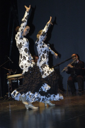2010/05/12 - granada - spain - flamenco evening in the theater pablo neruda Stock Photo - 9690784