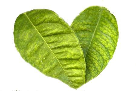 counterfeit: heart of orange leaves Stock Photo