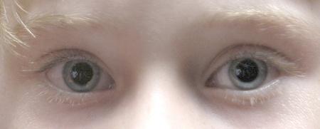 ojos azules photo