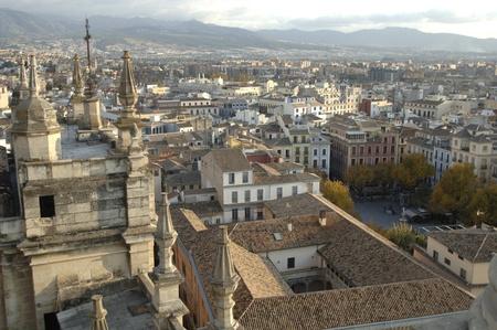 Granada vista desde el campanario de la Catedral de Granada. 17112011