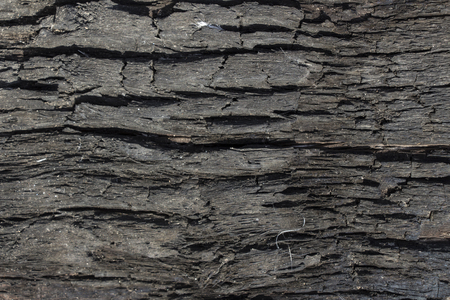burned wood texture, black grunge background Archivio Fotografico